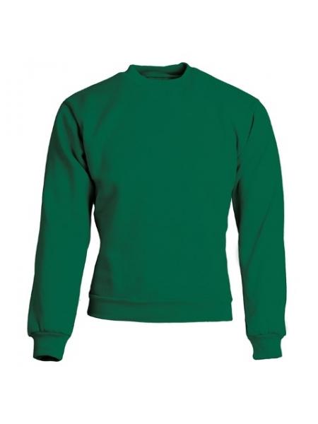 F_e_Felpa-uomo-girocollo-con-girovita--polsini-e-collo-elasticizzati-Verde.jpg