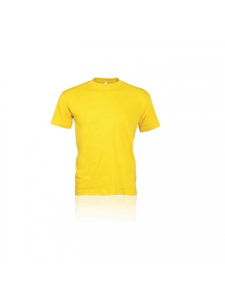 t_-_t-shirt-adulto-colorate_3_.jpg