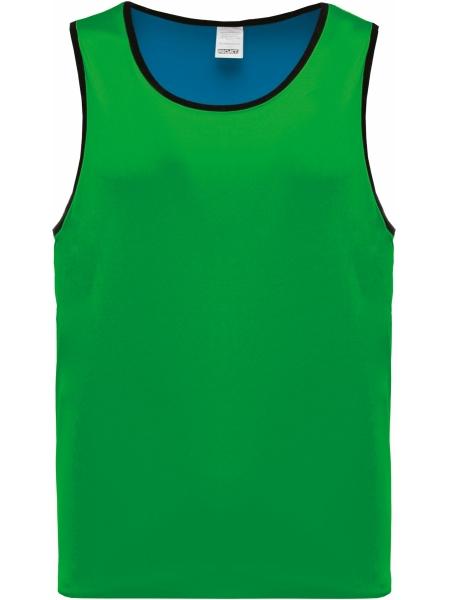 pettorina-reversibile-da-allenamento-proact-sporty royal blue - green.jpg